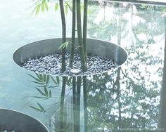 magnificent circular garden within water element Modern Landscaping, Outdoor Landscaping, Outdoor Gardens, Landscape Architecture, Landscape Design, Pool Water Features, Deco Nature, Design Jardin, Plantation