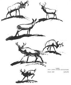 Bambi - Deer Studies