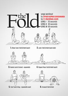 The Fold Workout - Concentration - Full Body