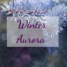 Inject some beautiful pastel hues into your Christmas this year with our winter aurora range. Be bold with the beauty of winter light. Click on the link in the bio to order your Christmas decoration theme.  #PinesAndNeedles