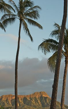 How to save money on Maui vacation