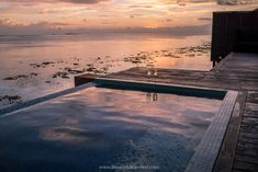 The 11 Best Things to Do in Maldives During Your Island Vacation Maldives Vacation, Maldives Resort, Maldives Water Villa, Swimming With Whale Sharks, Overwater Bungalows, Island Nations, Crystal Clear Water, Underwater World, Day Trip