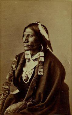 Good Buffalo Bull - Oglala - 1872