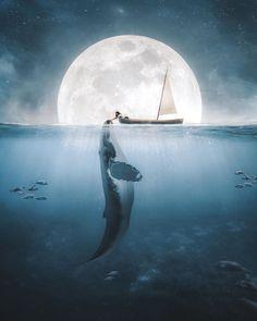 Image may contain: outdoor and water Fantasy Landscape, Fantasy Art, Beautiful Dark Art, Whale Art, Ocean Art, Ocean Life, Anime Scenery, Art Drawings Sketches, Surreal Art