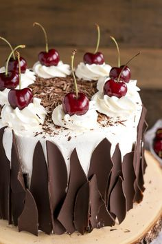 Black Forest Cake combines rich chocolate cake layers with fresh cherries, . -This Black Forest Cake combines rich chocolate cake layers with fresh cherries, . Mini Desserts, Delicious Desserts, Food Cakes, Cupcake Cakes, Cupcakes, Cake Recipes, Dessert Recipes, Top Recipes, Healthy Recipes