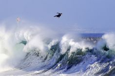 Photo by Benjamin Ginsberg Surfer Bobby Okvist airs off the back of a wave in Newport Beach, CA.