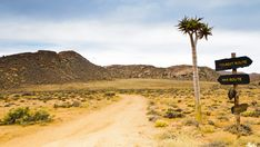 Stock Footage of A static timelapse of a gravel road with rocky mountains in the background, a and tourist road sign next to a quiver tree on an overcast day available on request. Explore similar videos at Adobe Stock Mountain Background, Quiver, Rocky Mountains, Stock Video, Background Images, Stock Footage, Monument Valley, 4x4, Trees