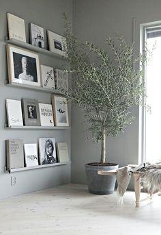 tree indoors