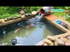 Cách làm lọc hồ cá Koi đơn giản mà hiệu quả - How to make a koi pond filter | Koi Fish Pond Chanel - YouTube Pond Filter Diy, Pond Filters, Fish Care, Crates, Swimming Pools, Outdoor Decor, Nature, Youtube, Garden Ponds