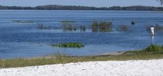 Lake Louisa State Park - http://www.activexplore.com/activity/lake-louisa-state-park/