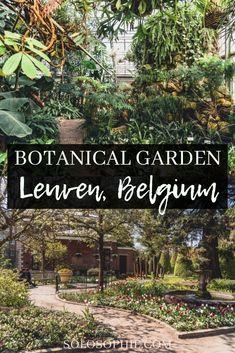 A Plant-Filled Visit to Kruidtuin Leuven, the Oldest Botanical Garden in Belgium #secretleuven #leuven #belgiumtravel