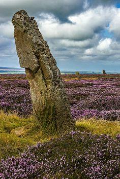 North Yorkshire Moors, England