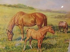 Ole Larsen Print Litho Horses with Foal in Field  Framed with Border signed