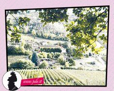 L'Oltrepò Pavese è una terra che ci regala tripudi di profumi e sapori. Il 28 Luglio in Villa Alpeggiani  potrai degustare la novità del Vinitaly 2013: JULE'! F.ne Casa Minchino 21/A (Strada Lumello) Ponte Nizza, Pavia