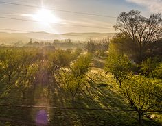 Sunrise in France New Work, Vineyard, Sunrise, Behance, Mountains, Gallery, Check, Nature, Photography