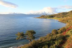 The scenic coastline of Ushuaia, Argentina: Visit transatlantic.travel or contact Eileen Schlichting to learn more! #vacation #unique #nottouristy