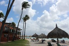 Aruba Resorts - Tamarijn Aruba All Inclusive. A low-rise beachfront playground on Druif Beach where all rooms are oceanfront, each with a great view. You won't go hungry either - as there are several dining options, bars and lounges. Guests also enjoy exchange privileges at the adjacent Divi Aruba which offers a nine-hole golf course, spa and beauty salon as well as additional restaurant opportunities. But the unique thing here is that the rooms are truly beachfront as you can see from the…