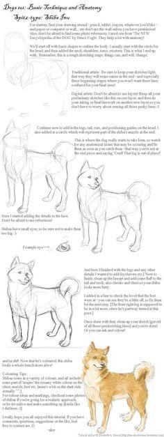 Dogs 101: Shiba Inu by inu-aku-kitsune