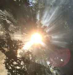 #GOLDEN #SUN #GLOWS  #SOLAR #BURSTING  #Rays of #HOPE  <3