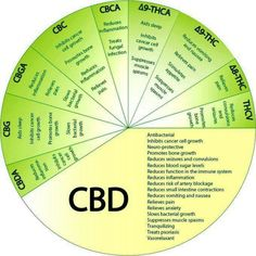 What is CBD Oil? CBD CBD short for Cannabidiol is a substance extracted from the hemp plant. The medical effects of CBD are significant. CBD does not produce Medical Cannabis, Cannabis Oil, Cannabis Growing, Cannabis Plant, Cannabis Edibles, Ganja, Endocannabinoid System, Cbd Hemp Oil, Medical Marijuana