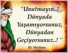 ✿ ❤ Perihan ❤ ✿ Hz. Mevlana Lyric Quotes, Lyrics, Allah Islam, Sufi, Famous Quotes, Cool Words, Wisdom, Messages, Feelings