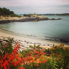 Fall starting to show its colors on the coast of Maine. Photo courtesy of jurisdawn on Instagram.