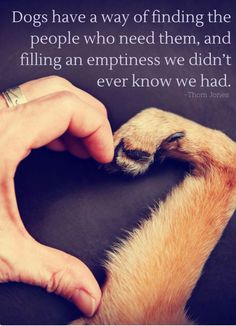 Dogs have a way of finding the people who need them, and filling an emptiness we didn't ever know we had. Source by riekehamburg dog dog memes dog videos videos wallpaper dog memes dog quotes dogs dogs pictures dogs videos puppies puppy video I Love Dogs, Puppy Love, Cute Puppies, Cute Dogs, Animals And Pets, Cute Animals, Animal Quotes, Dog Mom, Belle Photo