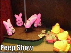 "Where ""Peeps"" go after surviving Easter."