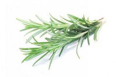 Remedios naturales con plantas para combatir el estrés