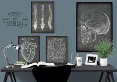 SET of Doctor's Office Art, Anatomical Heart Print, Chalkboard Medical Illustrations, Skull Poste Doctors Office Decor, Medical Office Decor, Doctor Office, Office Mural, Office Art, Office Ideas, Illustrations Médicales, Medical Illustrations, Office Depot