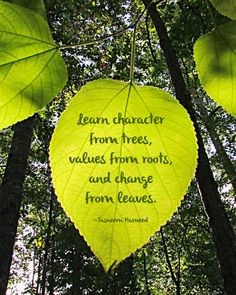 Green leaf and quote about leaves, leaf quotes, tree quotes, self reminde. Good Morning Wishes Pictures, Morning Images, Good Morning Quotes, Morning Pics, Quotable Quotes, Wisdom Quotes, Words Quotes, Camp Quotes, Sayings