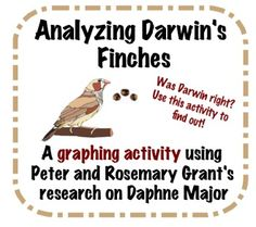 Analyzing Darwin's Finches- Graphing Activity