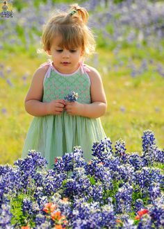 Flickr    ❤️ little girl amongst bluebonnets 〰