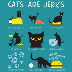 Truth! » Cats are Jerks » by machmigo  on  neatoshop.com