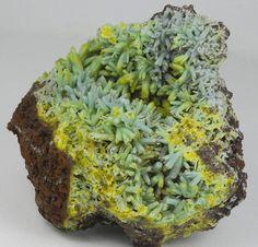 Plumbogummite pseudomorphing Pyromorphite and Piromorphite - Yangshuo mine, Guangxi Autonomous Region, China