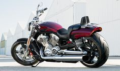 2015 Harley-Davidson® V-Rod® V-Rod Muscle® Motorcycles Photos & Videos