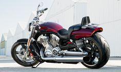 2015 Harley-Davidson<sup>®</sup> V-Rod<sup>®</sup> V-Rod Muscle<sup>®</sup> Motorcycles Photos, Videos & 360°