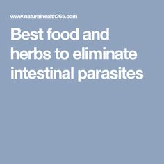 Best food and herbs to eliminate intestinal parasites