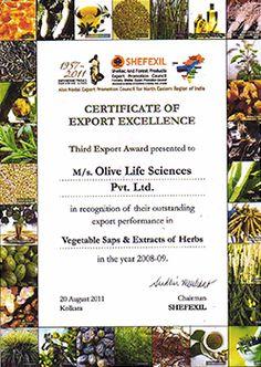 IndusViva International Pvt. Ltd. Research Scientist, Application Form, Certificate, Workout, Image, Ska, Work Out, Exercises