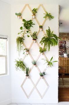 DIY Plant Wall Stand | The Best Wood Furniture