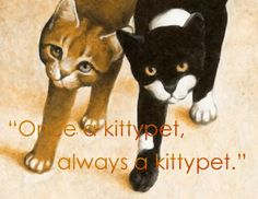 24 Best Warrior Cats Quotes images in 2014 | Warrior cats