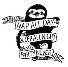 Nap All Day, Sleep All Night, Party Never Sloth Phenomenauts Sticker / Decal …