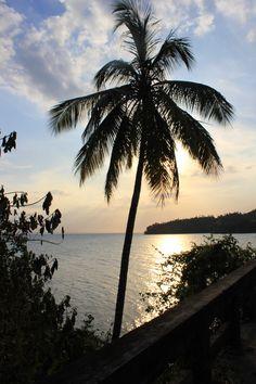 Grand Bahia Principe Cayacoa Samana #paradise #domincanrepublic #samana  More info: http://www.bahia-principe.com/en/hotels/samana/resort-cayacoa/