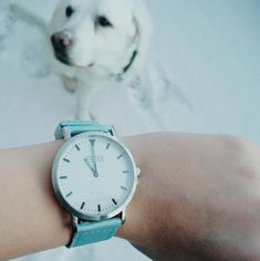 Watch by Shore Project