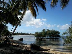 playa carolina ( las terrenas)  2015 organizzazione tour in repubblica dominicana & haiti www.santodomingoblu.com whatapp: 0018496323638