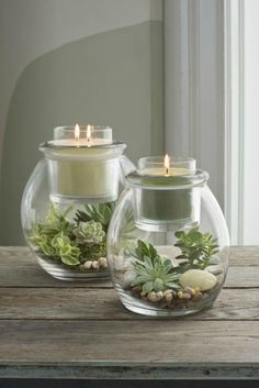 Create you very own mini terrarium in our Clearly Creative Escential Jar and Glo. - Partylite - Create you very own mini terrarium in our Clearly Creative Escential Jar and GloLite Jar holders fo - Mini Terrarium, Decor Terrarium, Terrarium Ideas, Candle Lanterns, Diy Candles, Candle Jars, Candels, Candle Holders, Bougie Partylite
