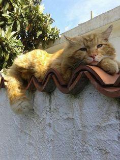 Getting cozy???