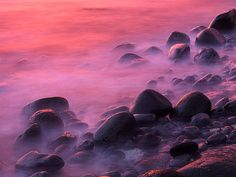 Jewels At Sunrise, the shore of Breidavik in Western Iceland. I Believe In Pink, Pink Blossom, I Give Up, My Favorite Color, Bright Pink, Iceland, Amazing Photography, Pretty In Pink, Backdrops