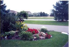Curb appeal starts with a nicely kept front yard.