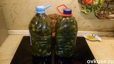Соленые огурцы (как из бочки) в пластиковой бутылке - Простые рецепты Овкусе.ру